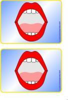 Mundbildpictogramme Größe 3 farbig